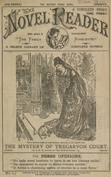 Advert For 'The Novel Reader', Periodical